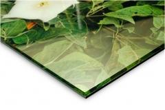 Acrylic-leaf